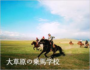 大草原を馬と駆ける喜び