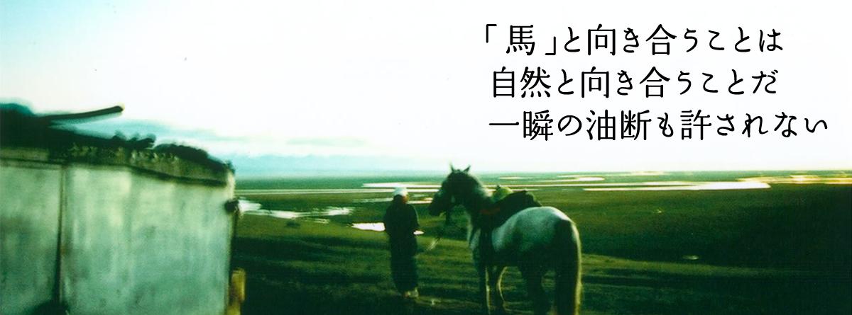 馬と向き合うことは自然と向き合うことだ一瞬の油断も許されない